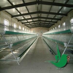 قفس مرغ منبریwww.paravar (1)