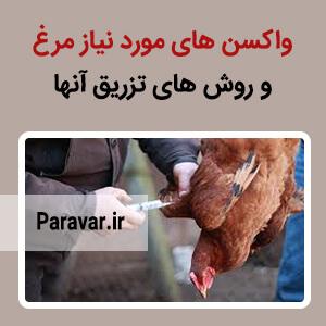 واکسن های مورد نیاز مرغ